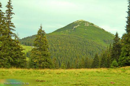 Гора Хом'як, Карпати